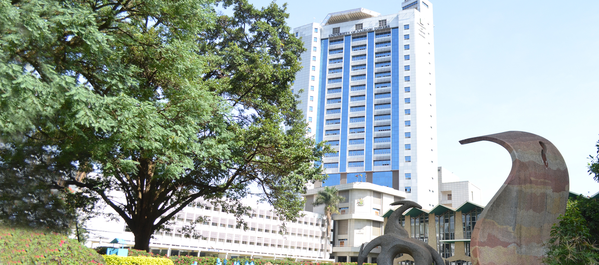 IDS | University of Nairobi Overview